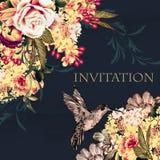 Όμορφο διάνυσμα πίσω με τα ροδαλά κολίβρια λουλουδιών Στοκ Εικόνες