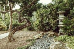 Όμορφο ιαπωνικό πράσινο πάρκο στο θερινό χρόνο στοκ φωτογραφίες με δικαίωμα ελεύθερης χρήσης