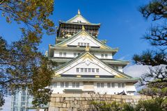 Όμορφο κάστρο της Οζάκα αρχιτεκτονικής με το δέντρο Στοκ Εικόνες