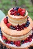 όμορφο κέικ Στοκ Φωτογραφία