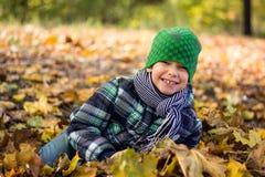 Όμορφο και ευτυχές παιχνίδι μικρών παιδιών με τα φύλλα, αντέχουν στο πάρκο Στοκ φωτογραφία με δικαίωμα ελεύθερης χρήσης