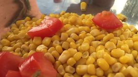 Όμορφο καλαμπόκι και ντομάτα φρέσκων λαχανικών που περιέρχονται στο κύπελλο, που βλέπει σε σε αργή κίνηση απόθεμα βίντεο