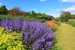 όμορφο καλοκαίρι κήπων Στοκ φωτογραφίες με δικαίωμα ελεύθερης χρήσης