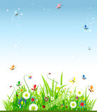 όμορφο καλοκαίρι λιβαδ&iot ελεύθερη απεικόνιση δικαιώματος