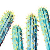 Όμορφο καλό φωτεινό μεξικάνικο τροπικό floral βοτανικό θερινό ζωηρόχρωμο σχέδιο της Χαβάης μιας απεικόνισης χεριών watercolor κάκ απεικόνιση αποθεμάτων