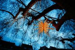 Όμορφο καμμένος αστέρι ως διακόσμηση Χριστουγέννων οδών στο Στρασβούργο Στοκ Εικόνες