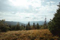 Όμορφο καταπληκτικό τοπίο των ηλιόλουστων βουνών, δάσος, ουρανός και Στοκ Εικόνες