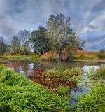 όμορφο καλοκαίρι ποταμών φύσης εικόνας Στοκ Εικόνα