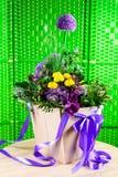 Όμορφο κιβώτιο δώρων με τα φρέσκα κίτρινα και πορφυρά λουλούδια PN άνθισης Στοκ Φωτογραφίες