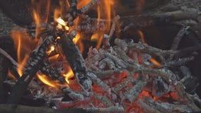 Όμορφο κινηματογραφήσεων σε πρώτο πλάνο στρατόπεδων σύνολο εστιών καψίματος ξύλου οξιών πυρκαγιάς τηλεοπτικό του ΣΕ ΑΡΓΗ ΚΊΝΗΣΗ β φιλμ μικρού μήκους