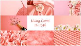 Όμορφο κολάζ με το χρώμα κοραλλιών διαβίωσης στοκ εικόνες