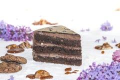 Όμορφο κομμάτι του κέικ, των μπισκότων και της καραμέλας με τα καρύδια Στοκ Εικόνα