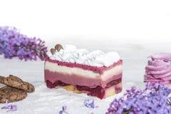 Όμορφο κομμάτι του κέικ, marshmallow, των μπισκότων και της καραμέλας με τα καρύδια Στοκ Εικόνες