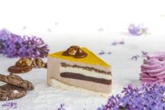 Όμορφο κομμάτι του κέικ, marshmallow, των μπισκότων και της καραμέλας με τα καρύδια Στοκ φωτογραφίες με δικαίωμα ελεύθερης χρήσης