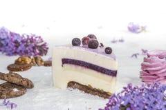 Όμορφο κομμάτι του κέικ, marshmallow, των μπισκότων και της καραμέλας με τα καρύδια Στοκ Φωτογραφίες