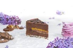 Όμορφο κομμάτι του κέικ, marshmallow, των μπισκότων και της καραμέλας με τα καρύδια Στοκ φωτογραφία με δικαίωμα ελεύθερης χρήσης