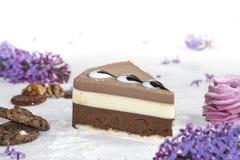 Όμορφο κομμάτι του κέικ, marshmallow, των μπισκότων και της καραμέλας με τα καρύδια Στοκ Φωτογραφία
