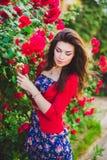 Όμορφο κορίτσι και κόκκινα τριαντάφυλλα Στοκ φωτογραφία με δικαίωμα ελεύθερης χρήσης