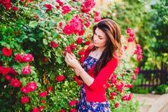 Όμορφο κορίτσι και κόκκινα τριαντάφυλλα Στοκ Φωτογραφίες