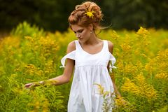 όμορφο κορίτσι πεδίων στοκ εικόνες