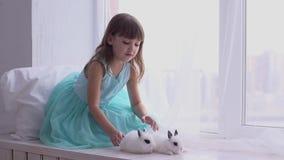 Όμορφο κορίτσι που έχει τη διασκέδαση, που αγκαλιάζει και που παίζει με το διακοσμητικό κουνέλι φιλμ μικρού μήκους
