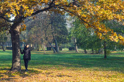 Όμορφο κορίτσι που απολαμβάνει τον ήλιο κάτω από το δάσος φθινοπώρου Στοκ φωτογραφίες με δικαίωμα ελεύθερης χρήσης