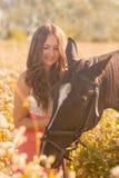 όμορφο κορίτσι που κτυπά το horse& της x27 κεφάλι του s στοκ φωτογραφίες