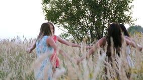 Όμορφο κορίτσι που χορεύει σε έναν τομέα - ακίδες στο ηλιοβασίλεμα φιλμ μικρού μήκους