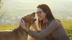 Όμορφο κορίτσι στα γυαλιά ηλίου που κτυπούν ήπια το χαριτωμένο σκυλί της απόθεμα βίντεο