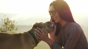 Όμορφο κορίτσι στα γυαλιά ηλίου που κτυπούν ήπια το χαριτωμένο σκυλί της φιλμ μικρού μήκους