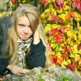 Όμορφο κορίτσι στην εποχή πτώσης Στοκ Εικόνες