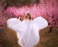 Όμορφο κορίτσι στον κήπο ροδάκινων στοκ εικόνα με δικαίωμα ελεύθερης χρήσης