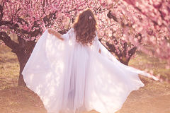 Όμορφο κορίτσι στον κήπο ροδάκινων στοκ φωτογραφίες με δικαίωμα ελεύθερης χρήσης