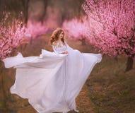 Όμορφο κορίτσι στον κήπο ροδάκινων στοκ φωτογραφία