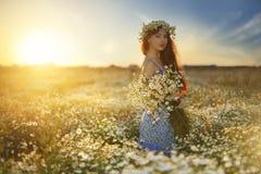 Όμορφο κορίτσι στον τομέα μαργαριτών Στοκ φωτογραφία με δικαίωμα ελεύθερης χρήσης