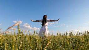Όμορφο κορίτσι στο άσπρο φόρεμα που χορεύει στον τομέα σίτου σε ένα κλίμα μπλε ουρανού απόθεμα βίντεο