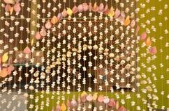 Όμορφο κρεμώντας θαλασσινό κοχύλι mobiles Στοκ Φωτογραφίες