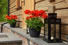 όμορφο κόκκινο λουλου&d Στοκ φωτογραφία με δικαίωμα ελεύθερης χρήσης