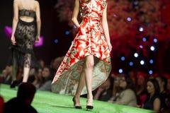 Όμορφο κόκκινο φόρεμα διαδρόμων επιδείξεων μόδας στοκ εικόνες