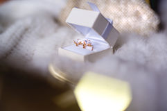 Όμορφο κόσμημα στο γαμήλιο κιβώτιο Στοκ φωτογραφίες με δικαίωμα ελεύθερης χρήσης