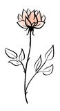 όμορφο λουλούδι απεικόνιση αποθεμάτων