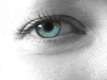 όμορφο μάτι Στοκ Εικόνα
