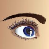 όμορφο μάτι Στοκ εικόνα με δικαίωμα ελεύθερης χρήσης