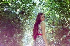Όμορφο μακρυμάλλες brunette στον αέρα plein Στοκ εικόνα με δικαίωμα ελεύθερης χρήσης