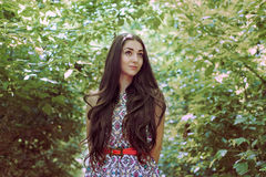 Όμορφο μακρυμάλλες brunette στον αέρα plein Στοκ Εικόνα