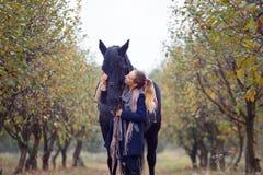 Όμορφο μοντέρνο κορίτσι σε ένα καπέλο κάουμποϋ με ένα άλογο που περπατά στο δάσος φθινοπώρου, ύφος χωρών Στοκ Φωτογραφία