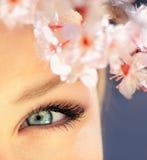 όμορφο μπλε μάτι Στοκ Φωτογραφία