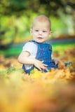 όμορφο μπλε-eyed παιδί το φθινόπωρο σε έναν τάπητα των κίτρινων κόκκινων φύλλων στοκ εικόνες