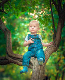 όμορφο μπλε-eyed παιδί το φθινόπωρο σε έναν τάπητα των κίτρινων κόκκινων φύλλων στοκ φωτογραφία