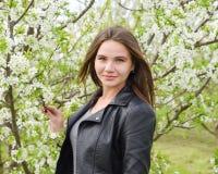 Όμορφο νέο κορίτσι νεράιδων σε έναν ανθίζοντας κήπο δαμάσκηνων Το πορτρέτο ενός κοριτσιού σε ένα λευκό ανθίζει το υπόβαθρο Στοκ εικόνα με δικαίωμα ελεύθερης χρήσης